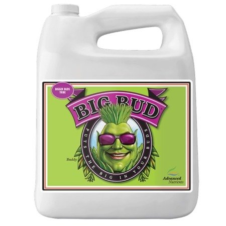 Big Bud 500ml